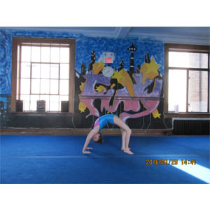 Gymnastics Fitness Kitchener On